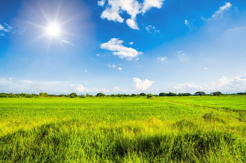 Bauerwartungsland verkaufen, kann lohnenswert sein